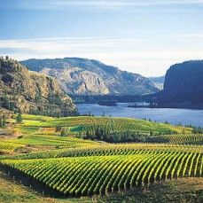 Located in southern British Columbia, Canada - the Okanagan Valley is one of the warmest regions in all of Canada. During the summer months, visitors are offered countless sandy beaches, hot sun, and a variety of outdoor and water activities.