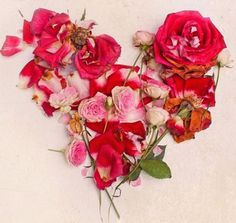 Ana Rosa, lunamiangel: via Imgfave for iPhone