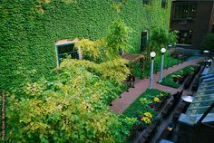 The Ivy Room at Tree Studios is one of the most unique wedding venues in Chicago.