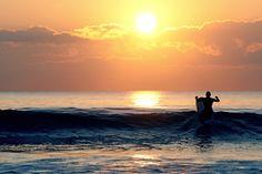 MinoltaD-Gower Surf