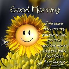 good morning smile god bless your sunday pictures photos Tuesday Quotes Good Morning, Cute Good Morning Quotes, Morning Memes, Good Morning Texts, Good Morning Picture, Good Morning Messages, Good Morning Good Night, Good Morning Wishes, Good Morning Images