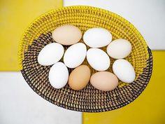 #jmvoge #eggs #light #nomad #enjoylife #dream #photooftheday #mystery  #travel #hope #meeting #vision #texture #line #table #hasselbladx1d #hasselbladholidays19 #hasselblad #hasselblad_official #noiphone  #fubiz  #france #omelette #stilllife Mystery Travel, Jean Michel, Omelette, Eggs, France, Texture, Table, Omelet, Egg
