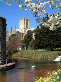 Bishop's Palace, Moat & Gardens, Wells, Somerset, UK