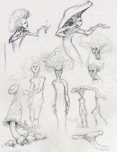 Fairy Drawings, Art Drawings Sketches, Fantasy Drawings, Tattoo Sketches, Mushroom Art, Mushroom Drawing, Arte Sketchbook, Hippie Art, Fairy Art