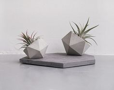 Concrete by Maya on Etsy