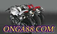 PGAONGA88.COMPGA: PGAONGA88.COMPGA