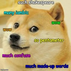 Doge - Such Shakespeare!