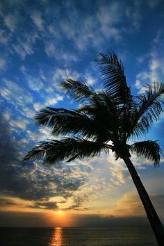 Hawaii // North Shore