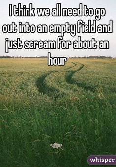 """I think we all need to go out into an empty field and just scream for about an hour"""