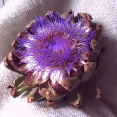 Lose your Dark Spots and Acne naturally... Drink Artichoke Flower tea! It's easy to make.  1.Wash flower.  2.Boil flower in 2 gallons of water for 30 mins. 3. Drink tea 3 times a day for week one. Drink tea 4 times a day for week two. Drink tea 5 times a day for week three. 4. Watch your face clear-up and get it's glow back!