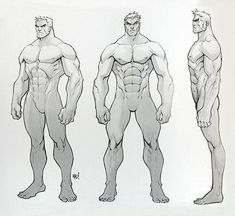 Anatomy Drawing Male Masters of Anatomy Male Figure Drawing, Figure Drawing Reference, Guy Drawing, Anatomy Reference, Drawing Poses, Art Reference Poses, Male Character, Character Model Sheet, Character Poses