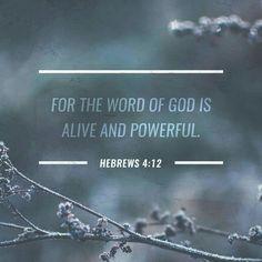 #verseoftheday #TrustGod #jesuschrist #jesuscalling #iloveyoujesus❤️ #Jesus #amen