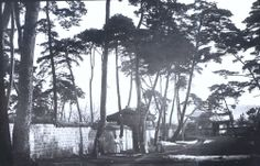 """""""Morning in the old palace grounds."""" Percival Lowell photo ca. 1882."""