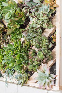 Vertical Garden! How to make a chevron wall planter via Jen Woodhouse