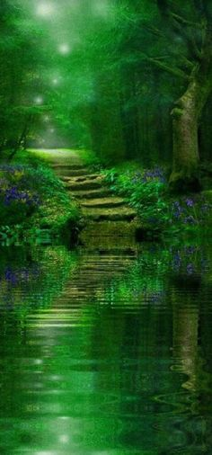 Spirit of the woods Amazing World