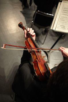 Violinist by Cameron Ogilvie