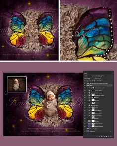April special offer 90% off - Newborn felted wool butterfly 2 - Digital backdrop - psd with layers
