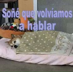 Puta k sad :'v Meme Gifs, Funny Memes, Purse Your Lips, Cute Phrases, Crush Memes, Sad Day, Thoughts And Feelings, Reaction Pictures, Best Memes