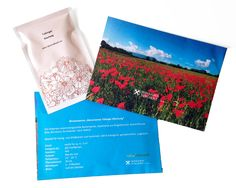Werbegrafik Blumensamen im Umschlag und dazupassende Karte Cards