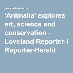 'Animalia' explores art, science and conservation - Loveland Reporter-Herald