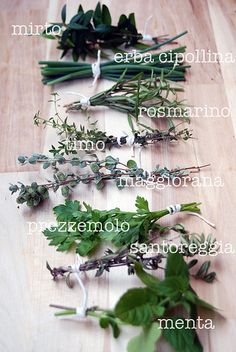 cooking italian: fresh herbs from the garden {my pics}