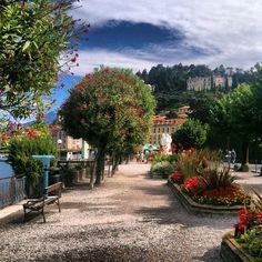 Comer See, Italian Lakes, Como Italy, Lake Como, Travel Bugs, Vacation Spots, Bella, Travel Destinations, Bonito