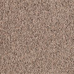 44 Best Lowes In Stock And Express Order Carpet Images