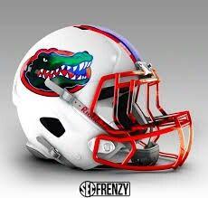 Florida gator helmet