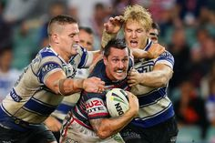 Preview: Canterbury-Bankstown Bulldogs vs Sydney Roosters. A flogging? I think not Mitchell Pearce, Rugby League, Canterbury, Roosters, Bulldogs, Doggies, Sydney, Baseball Cards, Couple Photos