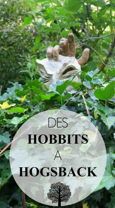 Des hobbits à Hogsback - The Path She Took Voyager Seul, Paths, Destinations, Culture, Outdoor Travel, Travel Destinations, Travel