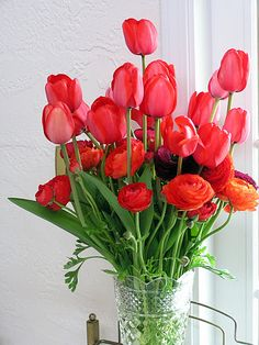 Red Impression tulips & ranunculus bouquet grown by Bare Mtn Farm