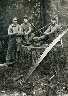 Axes and a crosscut saw.