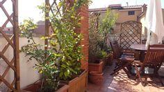 Roman terrace on april