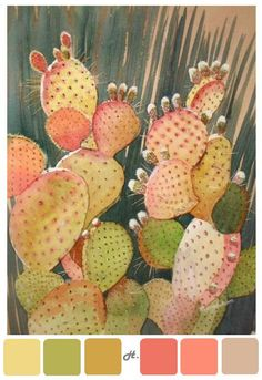 love the color of this cactus