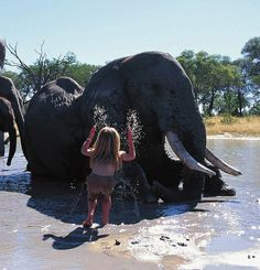 Born in Windhoek, Namibia in 1990, Tippi Benjamine Okanti Degre lived with her French parents, wildlife photographers Sylvie Robert and Alain Degre. She was born and raised until the age of 10 totally in the wild…