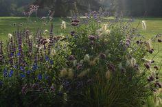 Vaste planten en grassen en éénjarigen