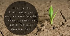 """""""Hope is the little voice you hear whisper """"maybe"""" when it seems the entire world is shouting """"no!"""" ✦"""