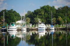 tarpon springs fl | Residential Moorings in Tarpon Springs picture - Tarpon Springs Image ... Spring Images, Spring Pictures, Tarpon Springs, Diving, Greek, Florida, Scuba Diving, The Florida, Greece