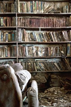 Old & Older Books on the Wall