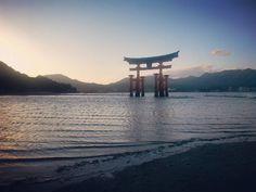 Le Torii flottant... une merveille  #travel #instravel #trip #voyage #viaje #asia #asie #japan #japon #shinto #miyajima #torii #kirei #キレイ #paisaje #landscape #paysage #maravilla #merveille #treasure #tesoro #tresor #unesco #patrimoine #patrimonio #patrimony (by cecile.kawaii)