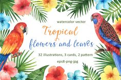 Tropical flowers and leaves. by Elena Medvedeva on @creativemarket