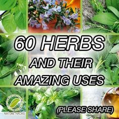 60 Herbs And Their Amazing Uses.... Read here : http://healthandnaturalliving.com/60-herbs-and-their-amazing-uses/