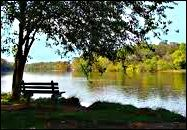 Post-MFA, Pre-MFA, or No MFA - Get Your Novel on a Realistic Path to Commercial Publication With Algonkian Writers Conference. Writers Conference, Online Programs, Paths, Paradise, Outdoor Decor, Image, Pathways, Heaven, Heavens
