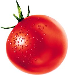 This high quality free PNG image without any background is about tomato, salad fruit, red fruit and tomatoes. Red Tomato, Sliced Tomato, Tomato Juice, Tomato Salad, Fiber Rich Foods, Red Fruit, Healthy Soup Recipes, Balanced Diet, Food Items