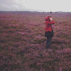 wanderlust | Flickr