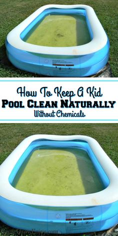 In the hot summer heat a kiddie pool turns green so darn fast! There are ways to make it last longer and without chemicals. Check out this tip on how to keep a kid pool clean naturally! Pool Cleaning Tips, Cleaning Hacks, Diy Swimming Pool, Dyi Pool, Portable Swimming Pools, Blow Up Pool, Easy Set Pools, Homemade Pools, Pool Hacks