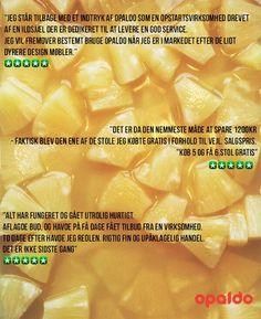 trustpilot anmeldelser #ananasiegenjuice http://www.trustpilot.dk/review/opaldo.dk