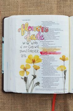Isaiah 40:7-8, July 12, 2017 Carol@Belleauway.com Illustrated Faith Pen, watercolor, dried pressed wildflowers, Art Basics clear matte gesso, Bible Art Journaling, Journaling Bible, Illustrated Faith