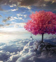 Wenn Du das Besondere suchst in Deinem Leben, achte auf den Zauber des Augenblicks!  Nur er gehört Dir wirklich!  Das Gestern ist vergangen, das Morgen wird erst sein, das Heute, die Gegenwart sind für kurze Zeit Dein Eigentum, verwalte es achtsam und gut!  Und..nutze den Zauber, der jedem kleinsten Augenblick innewohnt, halte ihn fest, bewahre ihn Dir im Herzen!