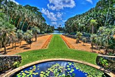 Here Are The 15 Most Beautiful Gardens You'll Ever See In Florida